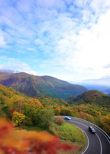 秋のいろは坂 栃木県の写真素材 [FYI02049313]