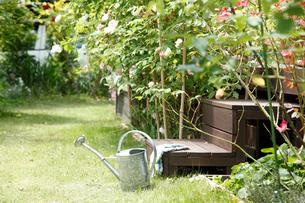 庭に置いたジョウロの写真素材 [FYI02049352]