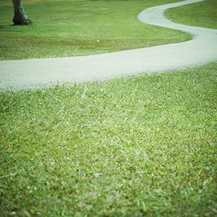 芝生と小道の写真素材 [FYI02049376]
