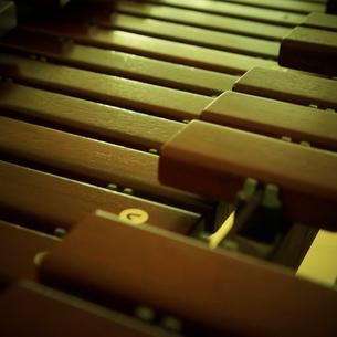 木琴の写真素材 [FYI02049492]
