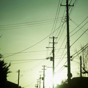 並んだ電柱と太陽の写真素材 [FYI02049533]