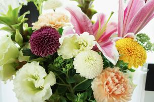 活けた花の写真素材 [FYI02049818]
