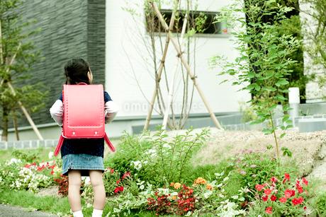 ランドセルを背負った女の子の後姿の写真素材 [FYI02049887]