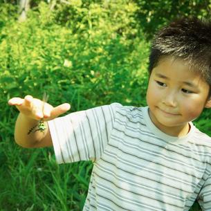 トンボを持った男の子の写真素材 [FYI02050178]