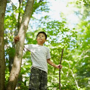 木の枝を持つ男の子の写真素材 [FYI02050294]