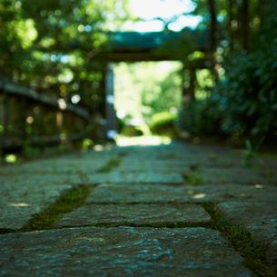 石畳と門の写真素材 [FYI02050314]