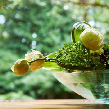 活けた花の写真素材 [FYI02050448]