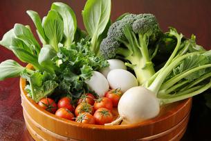 野菜の盛り合わせの写真素材 [FYI02050592]