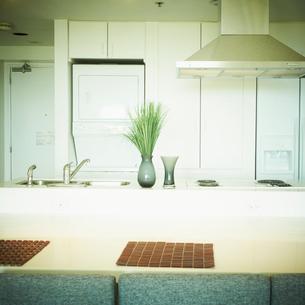 キッチンの写真素材 [FYI02050658]