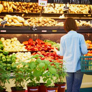 スーパーで買い物をする女性の写真素材 [FYI02050663]