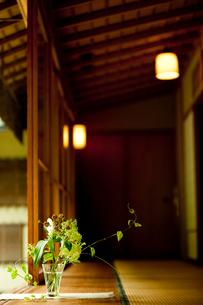 縁側と活けた花の写真素材 [FYI02050747]