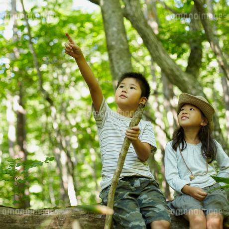 指差す男の子と見上げる女の子の写真素材 [FYI02050873]