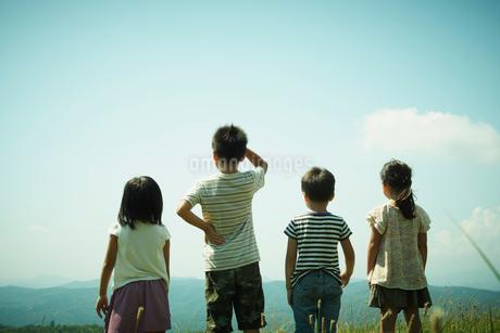 4人の子供達の後姿の写真素材 [FYI02050992]