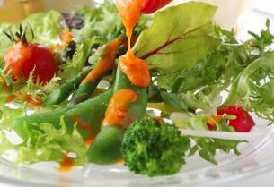 野菜サラダの写真素材 [FYI02051013]