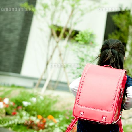 ランドセルを背負った女の子の後姿の写真素材 [FYI02051132]