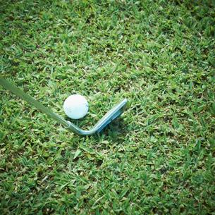 ゴルフボールとゴルフクラブの写真素材 [FYI02051449]