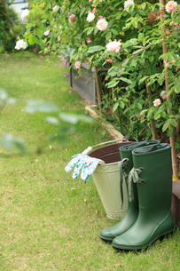 庭に置いた長靴とバケツの写真素材 [FYI02051504]