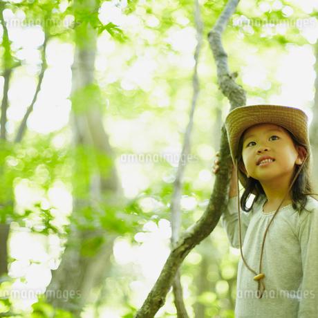 枝をつかむ女の子の写真素材 [FYI02051516]