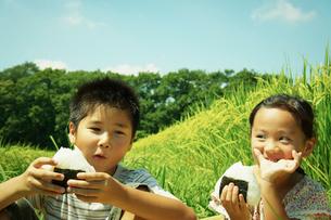 田園でおにぎりを食べる男の子と女の子の写真素材 [FYI02052083]