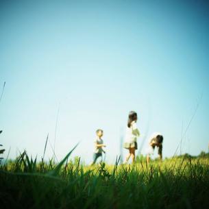草原で遊ぶ子供達の写真素材 [FYI02052103]