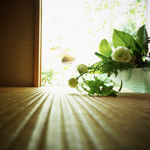 活けた花の写真素材 [FYI02052187]