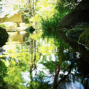 池の写真素材 [FYI02052231]