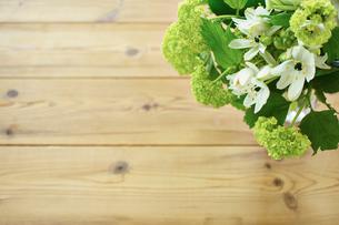 木目と花の写真素材 [FYI02052292]