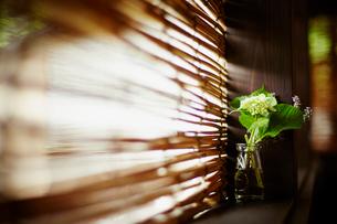 簾と活けたアジサイの写真素材 [FYI02052315]