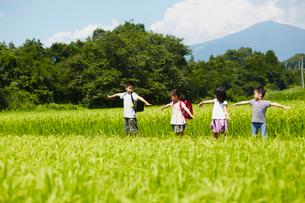 田園で腕を広げる4人の子供達の写真素材 [FYI02052620]
