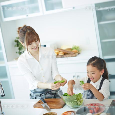 料理をする女の子と母親の写真素材 [FYI02052783]