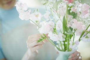 花瓶に花を活ける女性の写真素材 [FYI02052814]