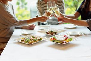 レストランで女子会をする女性達の写真素材 [FYI02052992]