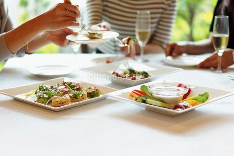 レストランで女子会をする女性達の写真素材 [FYI02053025]