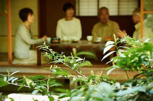 お茶を楽しむシニアグループの写真素材 [FYI02053135]