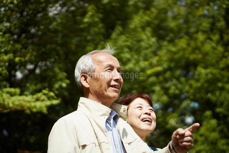 笑顔のシニア夫婦の写真素材 [FYI02053204]