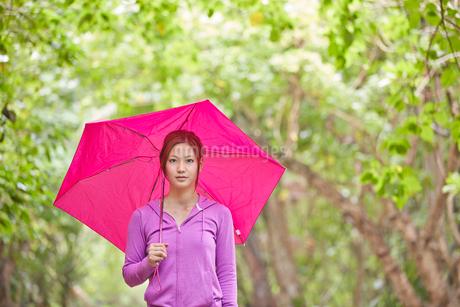 傘をさす女性の写真素材 [FYI02053220]