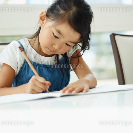 勉強をする女の子の写真素材 [FYI02053553]