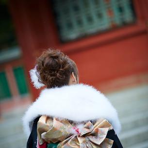 振袖姿の女性の後ろ姿の写真素材 [FYI02053613]