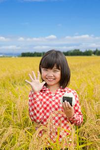 稲田でおにぎりを持つ女の子の写真素材 [FYI02053704]