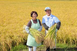 稲穂を抱える農家の夫婦の写真素材 [FYI02053747]
