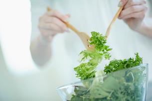 サラダを取り分ける女性の手元の写真素材 [FYI02053783]