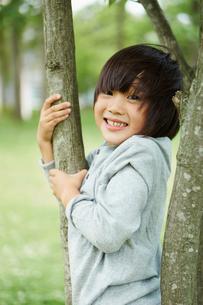 公園の木で遊ぶ男の子の写真素材 [FYI02053807]