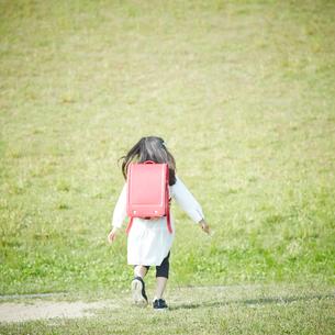 ランドセルを背負った女の子の後ろ姿の写真素材 [FYI02053970]
