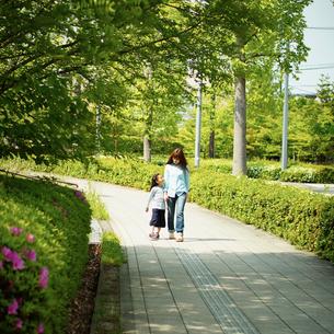 歩道を手をつないで歩く母と女の子の写真素材 [FYI02053977]
