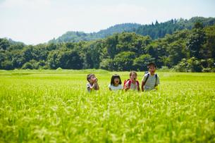 田園で叫ぶ4人の子供達の写真素材 [FYI02053995]