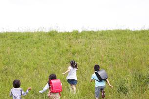 土手を駆け上がる4人の子供達の後ろ姿の写真素材 [FYI02054074]