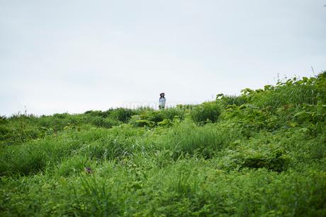 緑の草原と女性の写真素材 [FYI02054319]