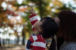 秋の公園で上を指差す女の子と見上げる母親の写真素材 [FYI02054428]