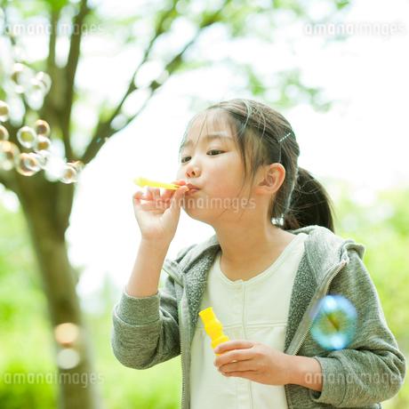 シャボン玉で遊ぶ女の子の写真素材 [FYI02054456]