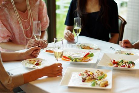 レストランで女子会をする女性達の写真素材 [FYI02054558]